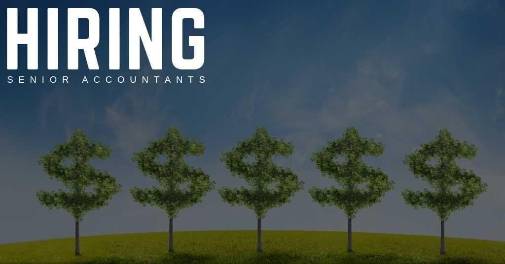 Senior Accountants