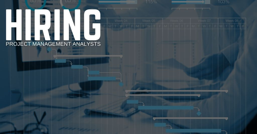 Project Management Analyst