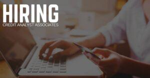 Credit Analyst Associate Jobs